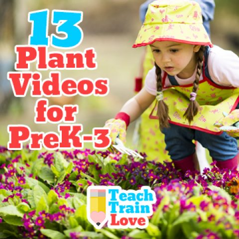 13 Plant Videos for PreK-3